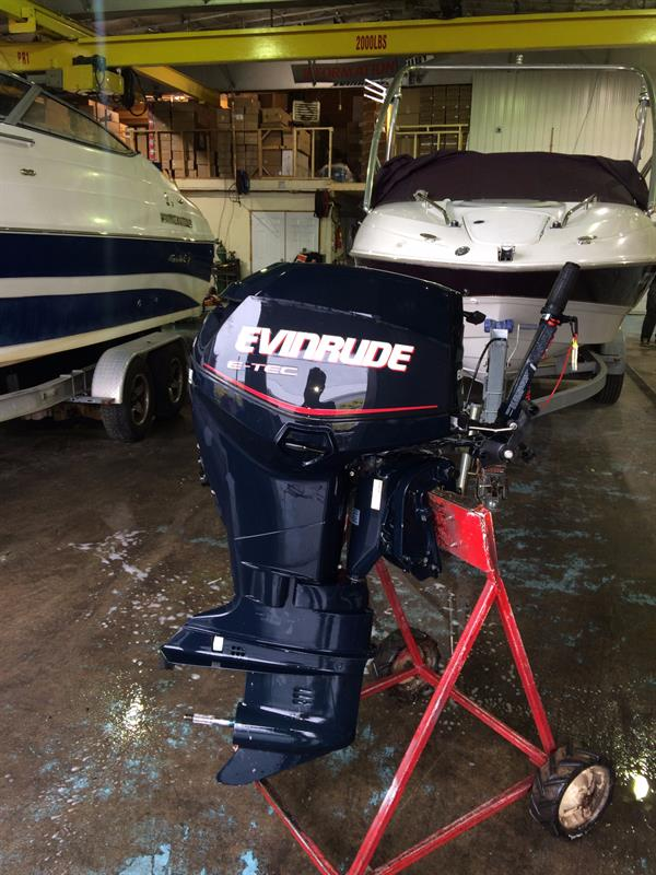 Evinrude Other 2006