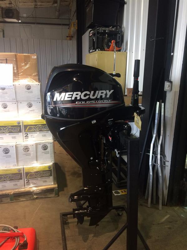 Mercury 25MLH 2015
