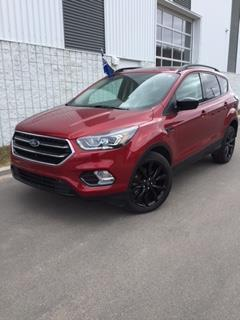 Ford Escape 2017 4WD 4dr SE #C317247