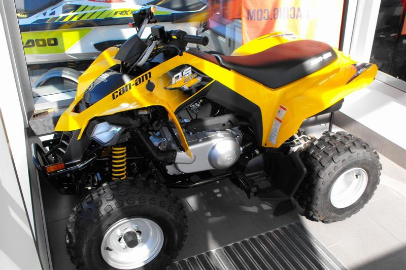 Can-am DS 2018