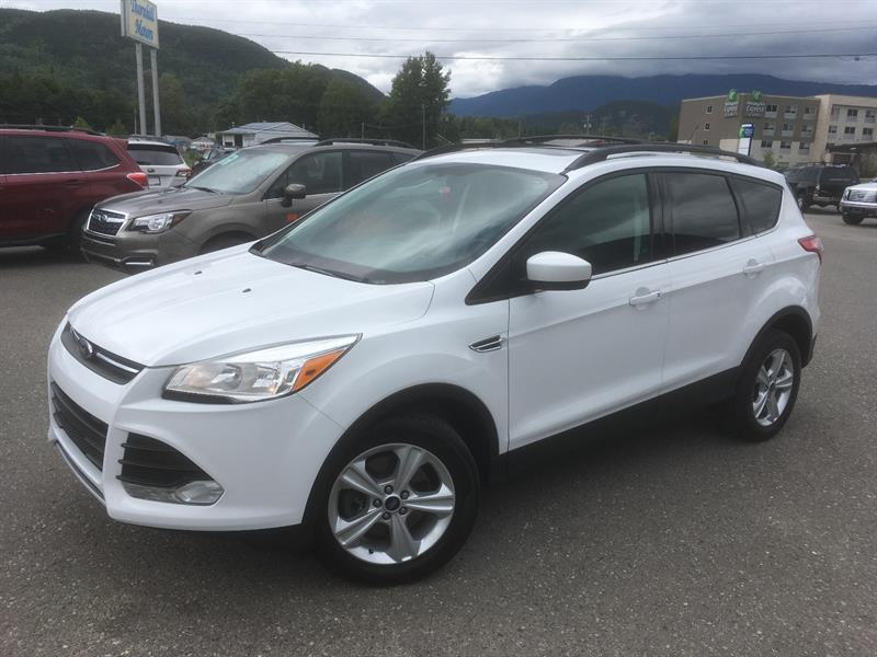 2013 Ford Escape FWD - SE #18049-1s
