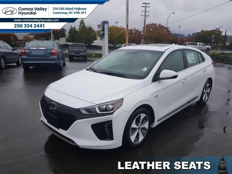 2019 Hyundai Ioniq Electric Ultimate Hatchback #19NQ5841