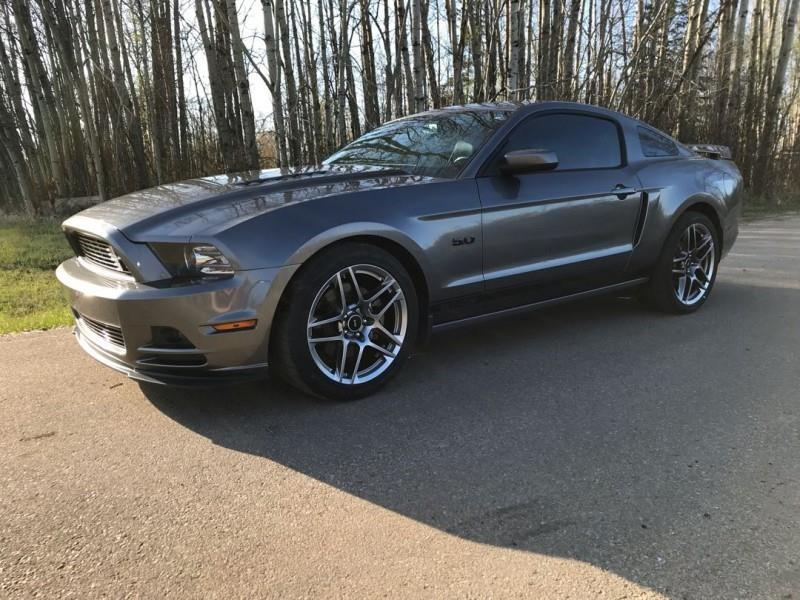 2014 Ford Mustang California Special #F232796