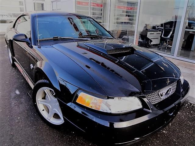 2004 Ford Mustang 2dr Cpe GT #J246A