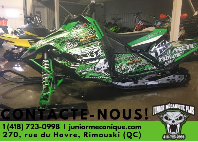 Arctic Cat Other 2010