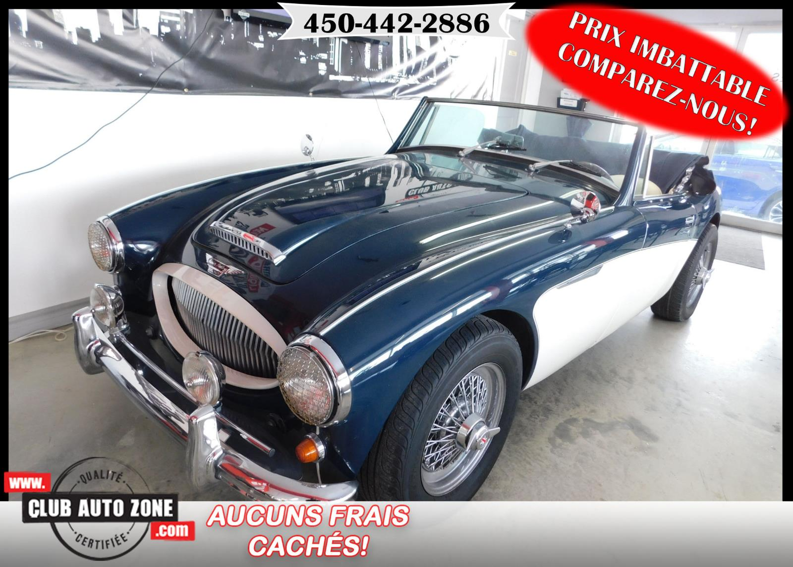 Austin Healey 3000 1997 MK3 #09250524