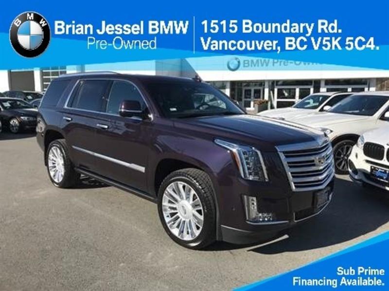 2018 Cadillac Escalade Platinum #BP770620