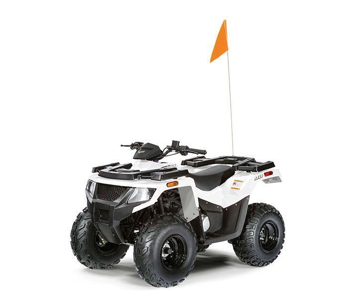 Arctic Cat ALTERRA 90 2018