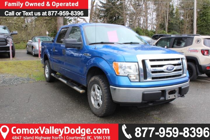 2010 Ford F-150 XLT #S505631A