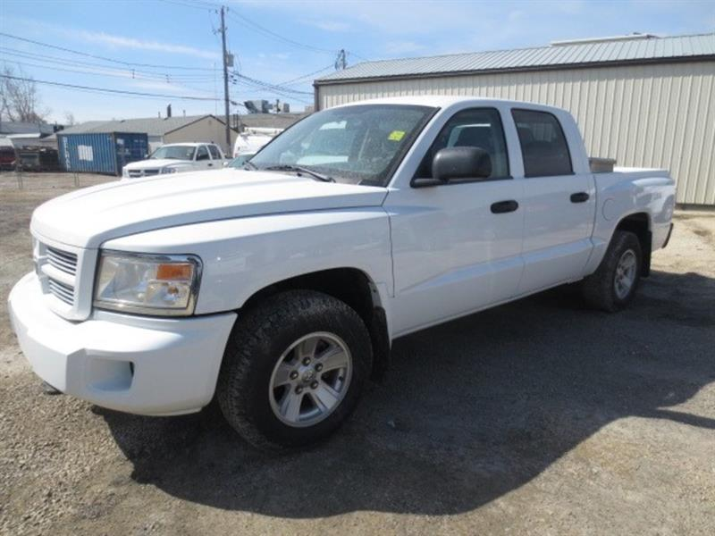 2011 Dodge Dakota SXT CREW - LOW KMS #3953