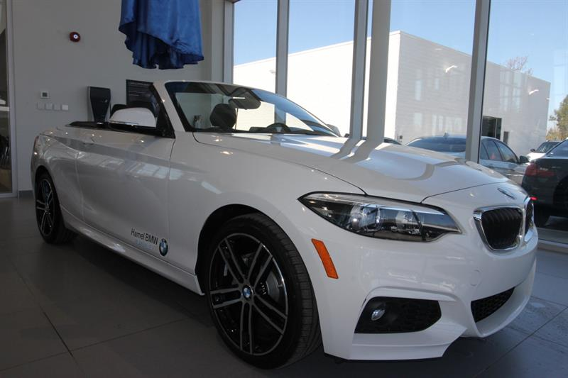 BMW 2 Series 2019 230i xDrive Cabriolet #19-305