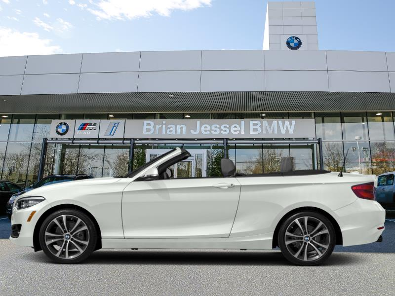 2020 BMW 2 Series 230i xDrive Convertible #21219RX9515297