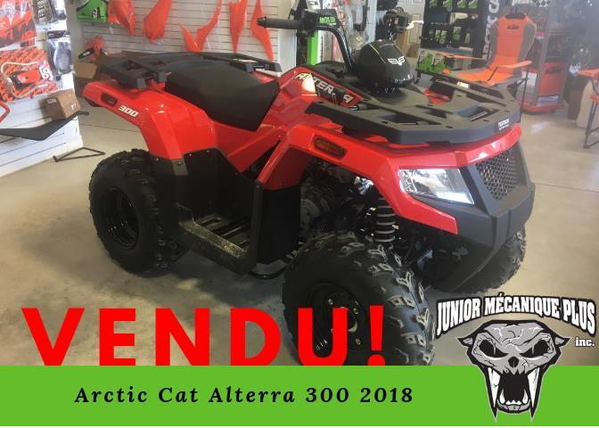 Arctic Cat Alterra 300 2018