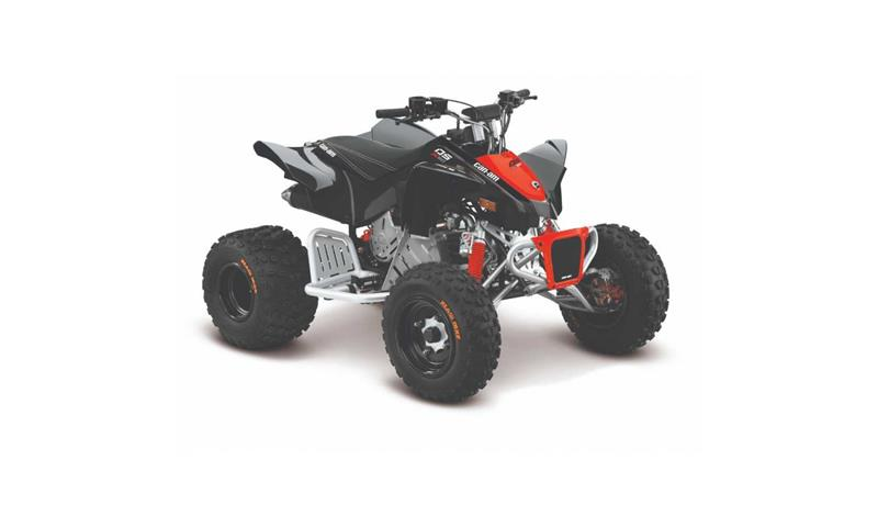 Can-am DS 90 X 2019