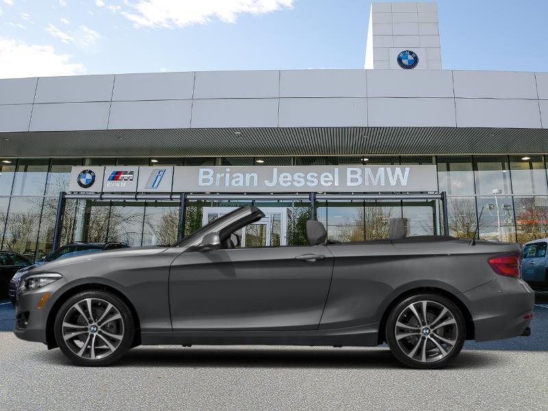 2020 BMW 2 Series 230i xDrive Convertible #5619RX102614773