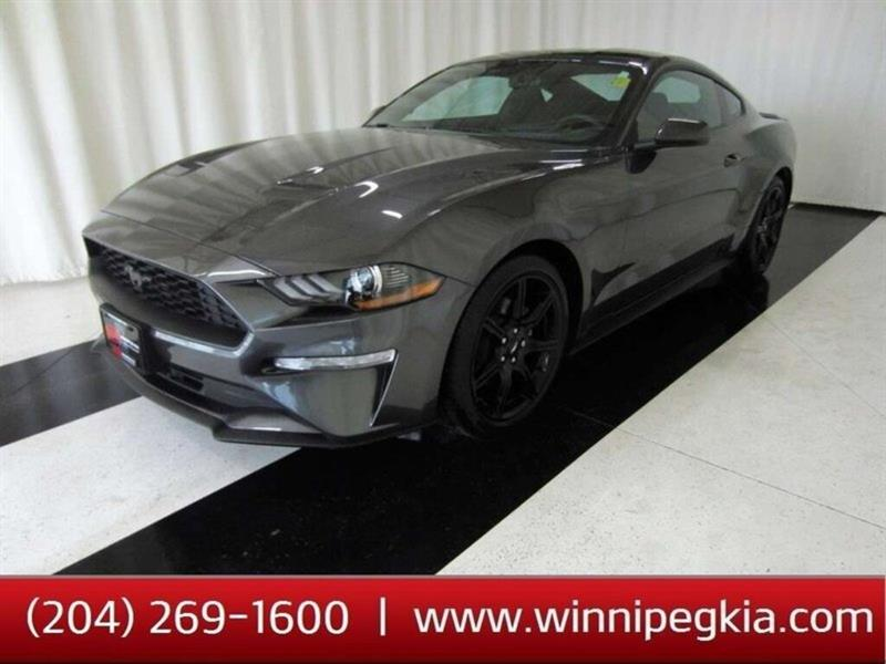 2018 Ford Mustang Ecoboost Fastback *Accident Free, Always Owned In #16JW77164A