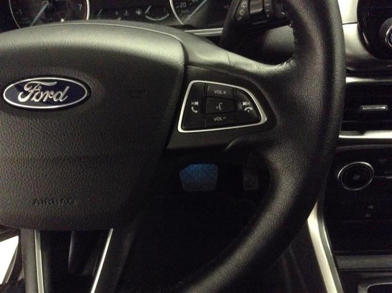 Ford EcoSport 20