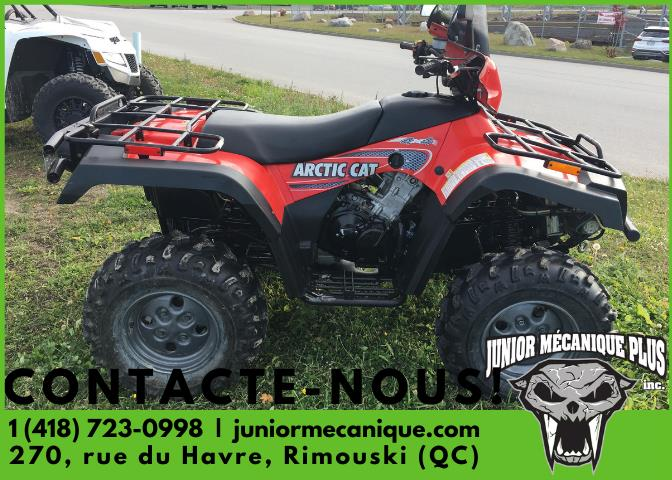 Arctic Cat 500 4X4 2003