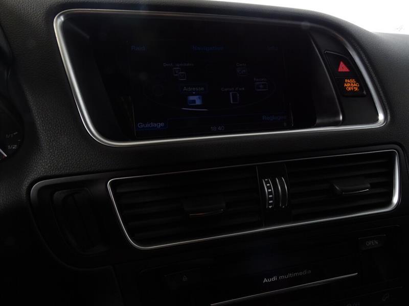 Audi SQ5 25