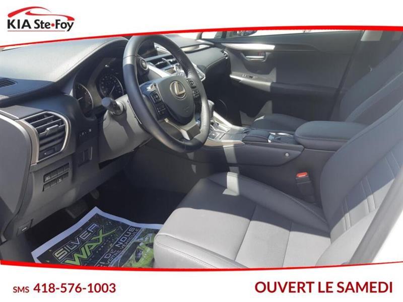 Lexus NX 23