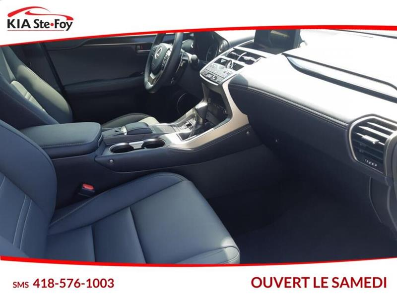Lexus NX 26