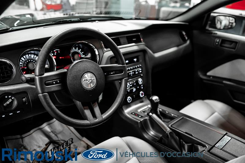 Ford Mustang 19