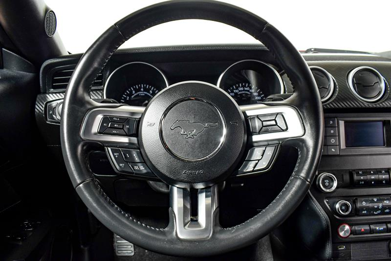 Ford Mustang 24