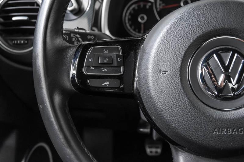 Volkswagen Beetle 19