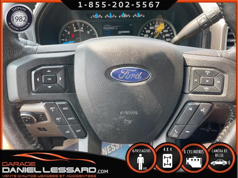 Ford F-150 17