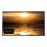 A1E  OLED  4K Ultra HD  High Dynamic Range (HDR)  Smart TV (Android TV)