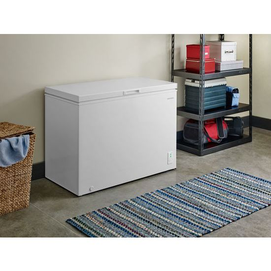 Model: AQC0902GRW | Amana 9.0 Cu. Ft. Compact Freezer with Flexible Installation