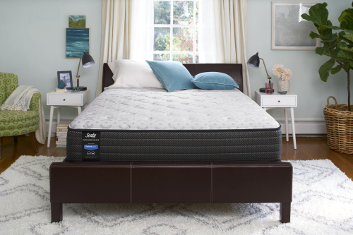 Sealy Performance Merriment Firm Mattress-Twin
