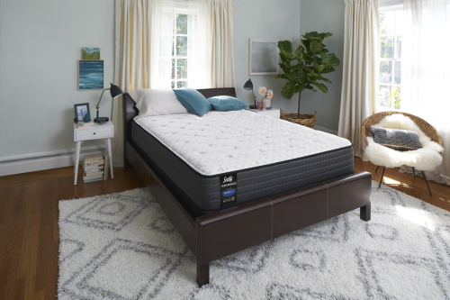 Model: 52031040 | Sealy Performance Merriment Plush Mattress-Full