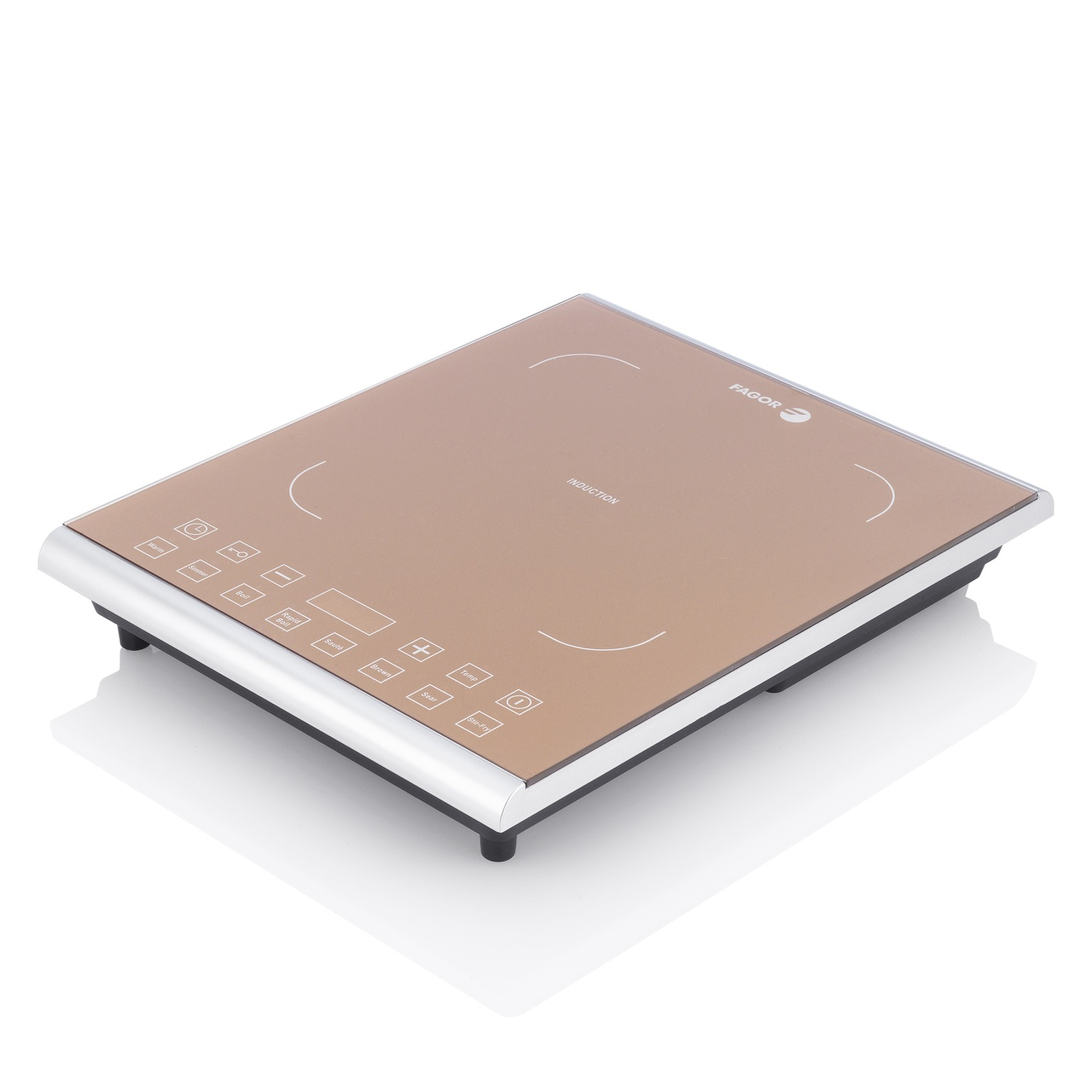 PRO PORTABLE INDUCTION COOKTOP