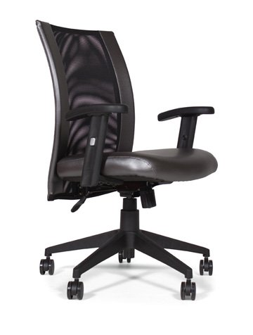 Addax  Task Chair