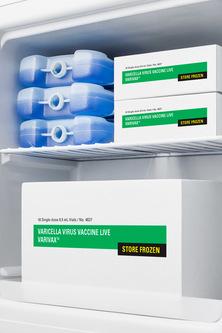 Model: FS24L7MED2 | Summit Compact All-Freezer