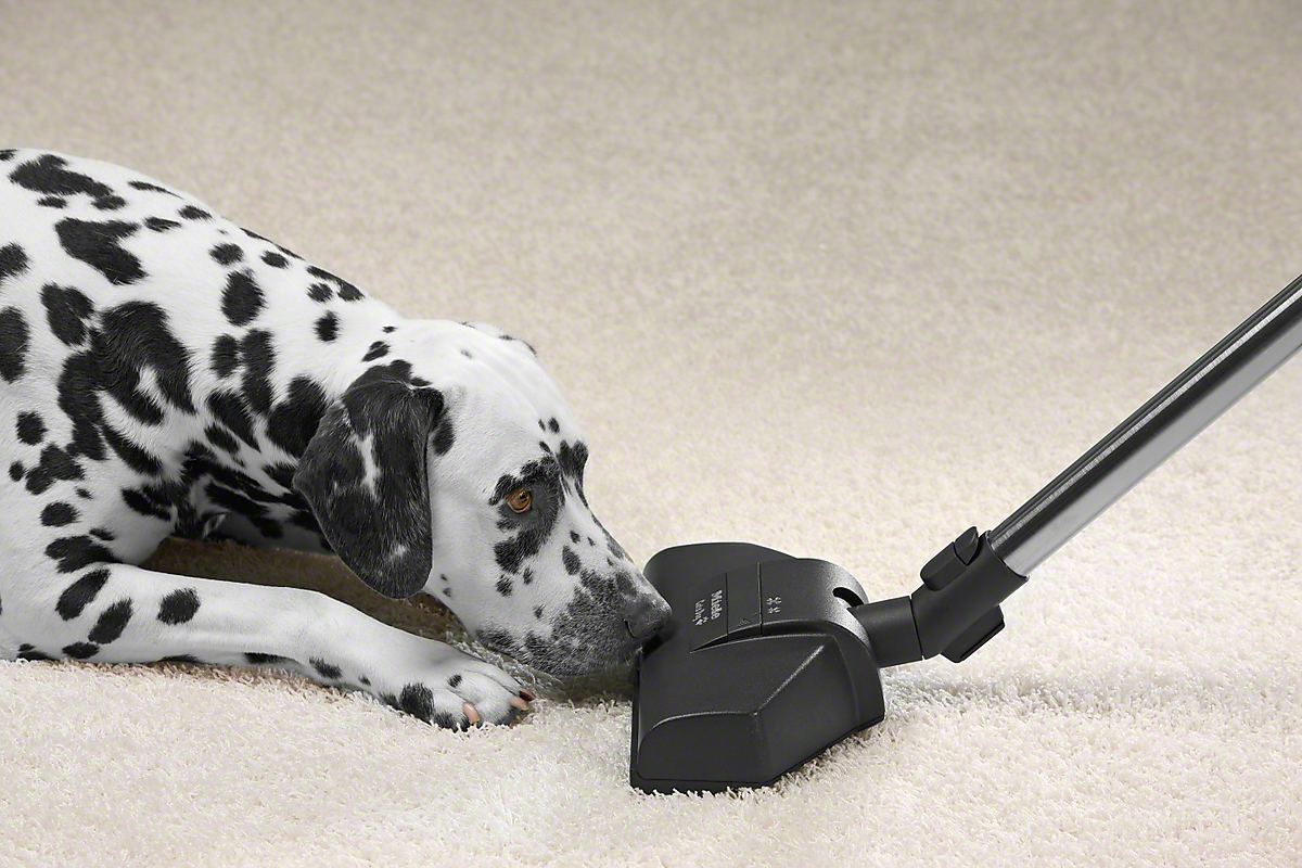 Model: STB 205-3 | Turbo - floorbrushFor quick removal of hair and threads, even from delicate rugs and carpets.