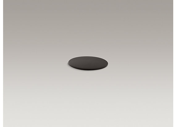 Kohler  Sink hole cover