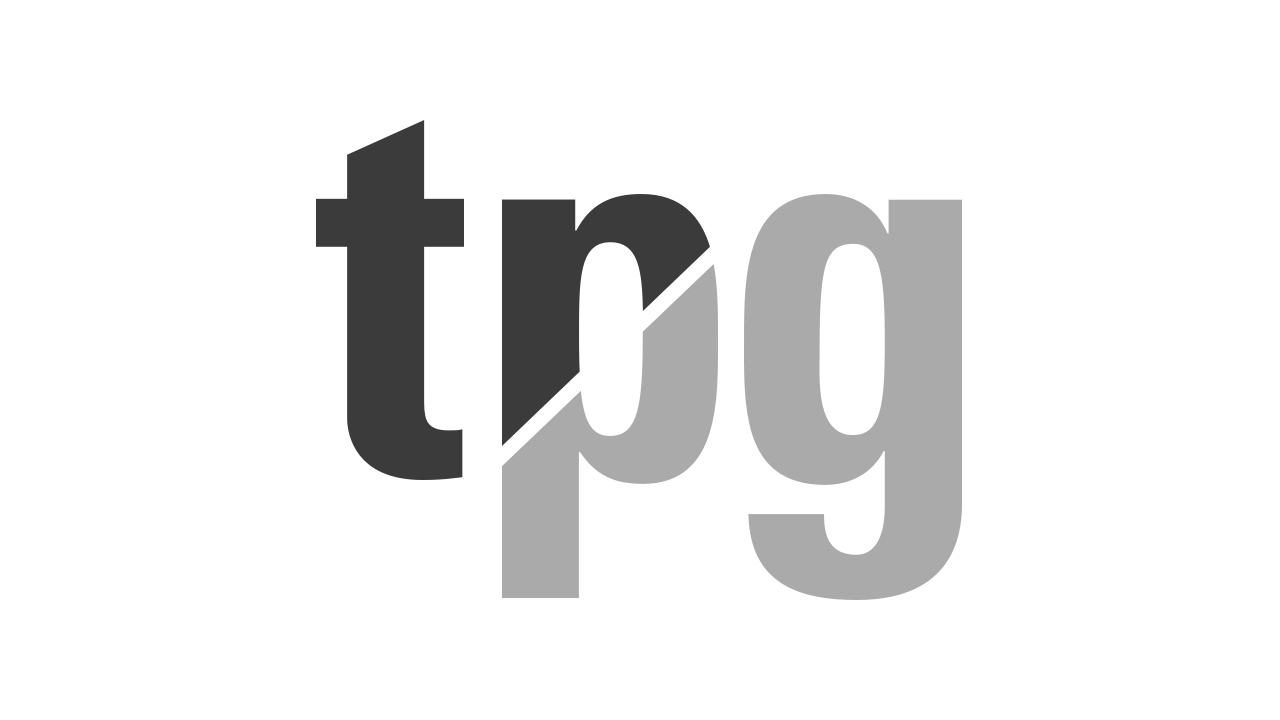 The Partnering Group Logo