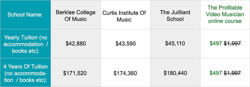 College vs the Profitable Video Musician course