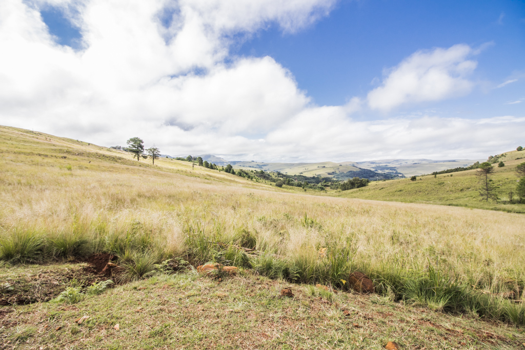 1 Ha Vacant Land in Dullstroom Country Estate