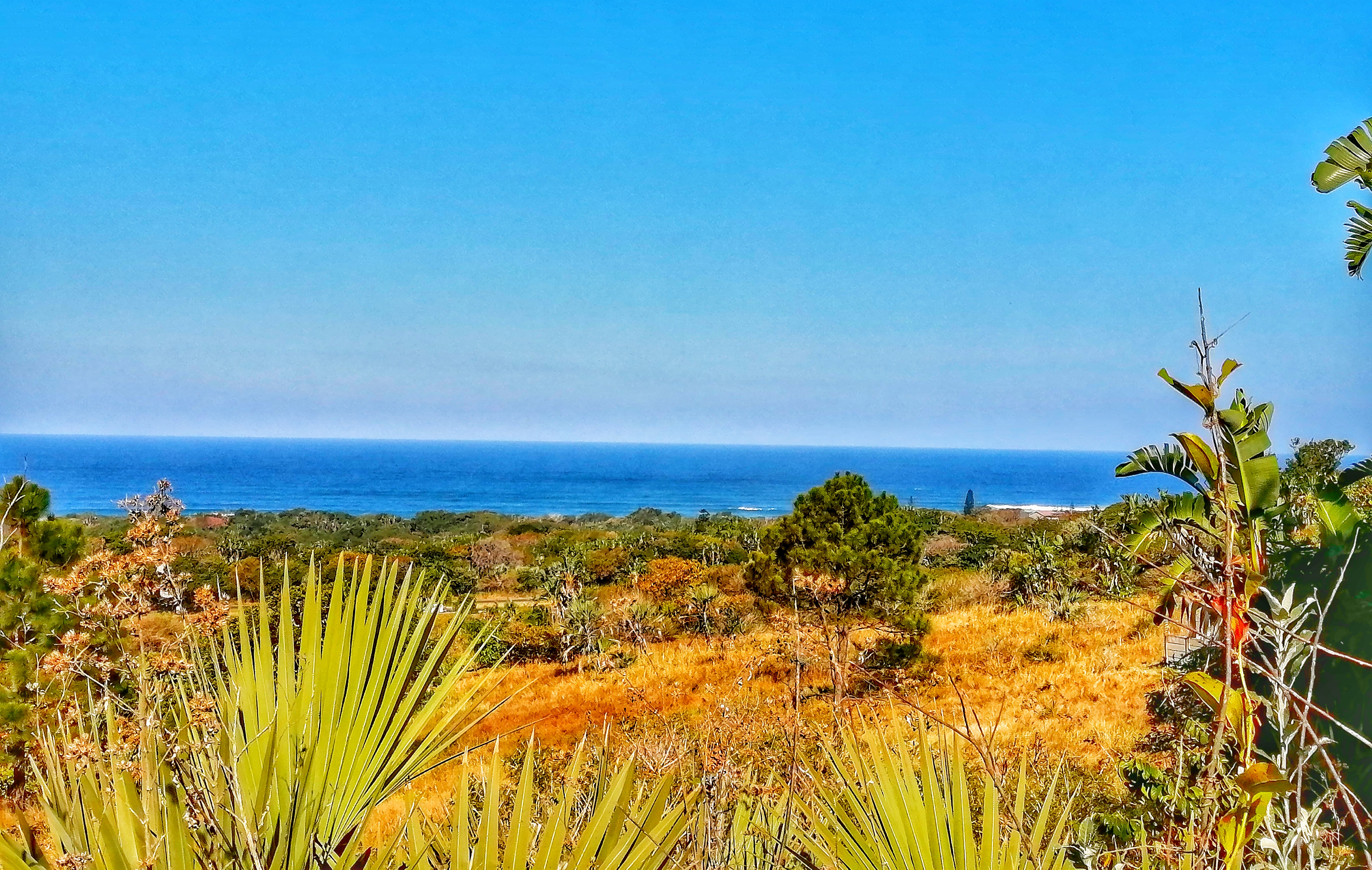 2085m2 Vacant Land For Sale in Palm Beach