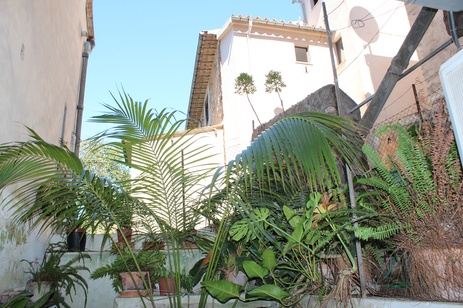 Images of The best commercial location in Sóller... real estate property