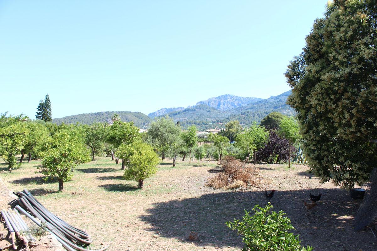 Imágenes de la propiedad inmobiliaria de Para los amantes del jardín con vista y sol...