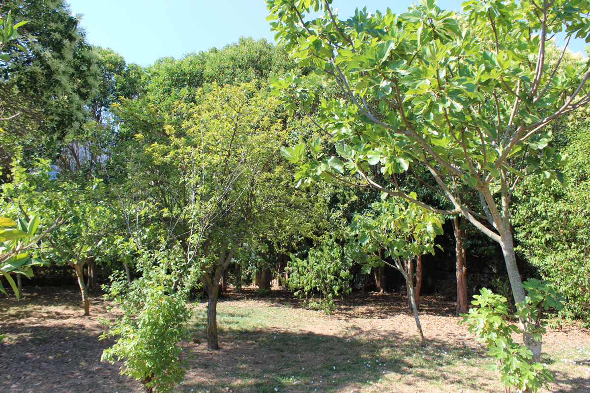 Images of For garden fans with view and sun... real estate property