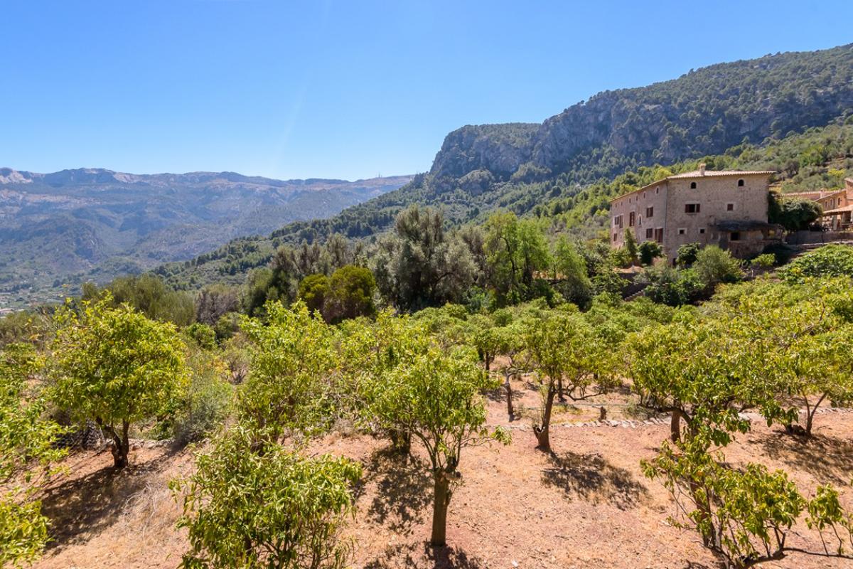 Imágenes de la propiedad inmobiliaria de Una mansión en lo alto de Sóller...