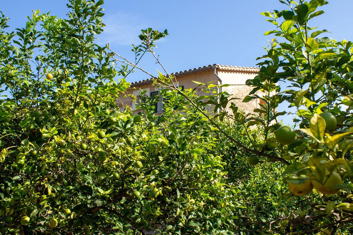 Imágenes de la propiedad inmobiliaria de En un lugar soleado e idílico...