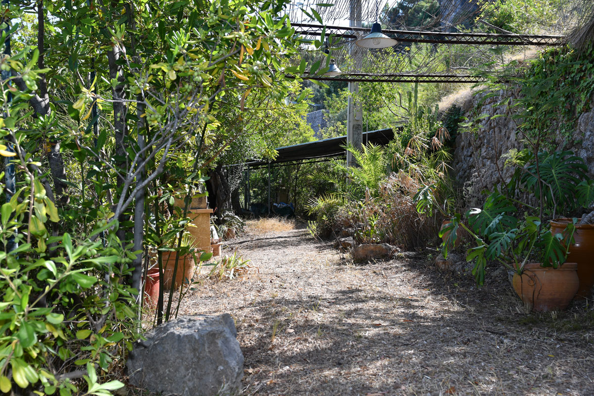 Imágenes de la propiedad inmobiliaria de Casa unifamiliar en un lugar único de Son Coll...