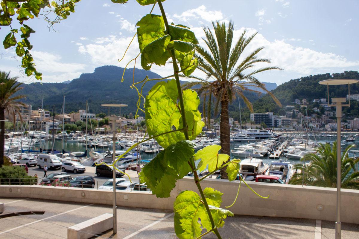 Imágenes de la propiedad inmobiliaria de La mejor vista del puerto...