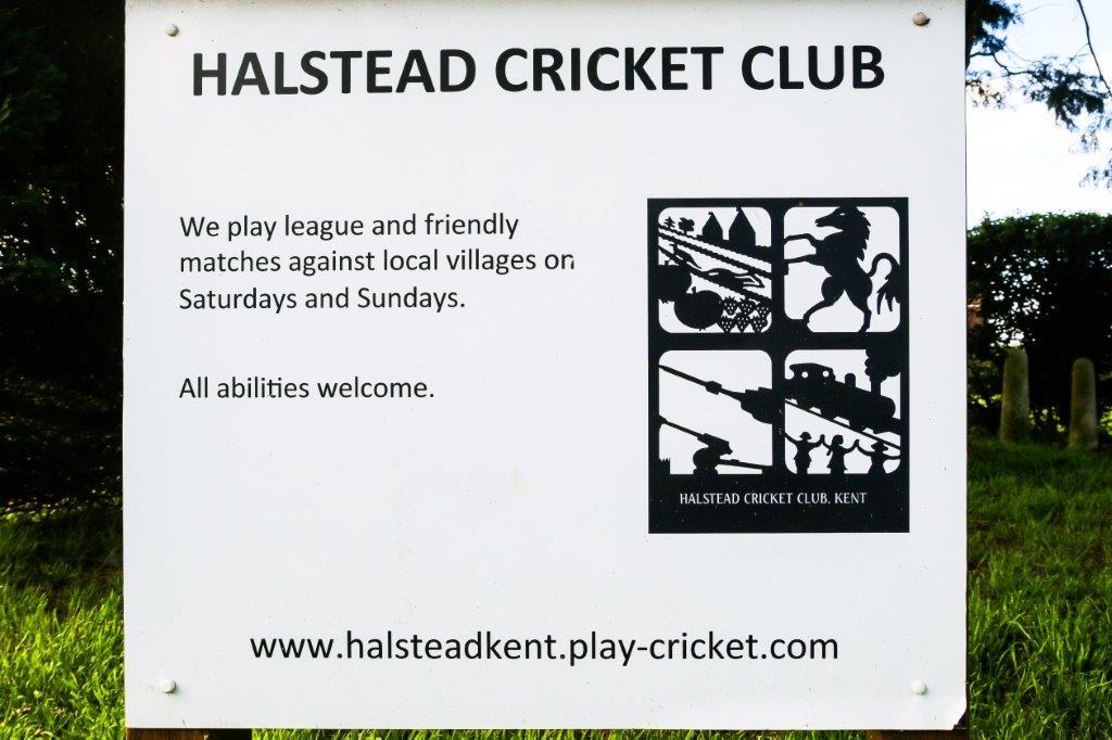 Halstead (3).jpg
